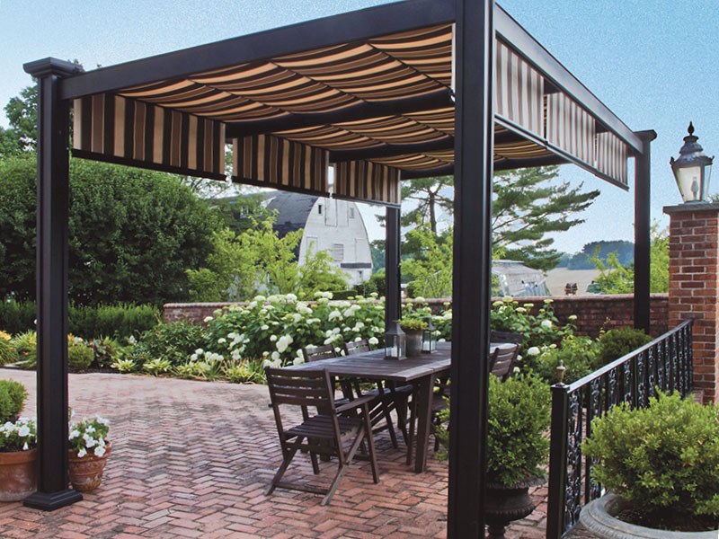 Shade Tree Canopies Cost Zef Jam