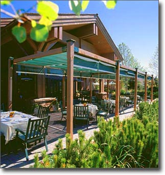 ShadeTree Commercial Awning Solution for local sport club & ShadeTree® Commercial Awnings | Sport Clubs Deck and Patio Canopies